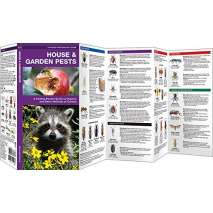 Insect Identification Guides :House & Garden Pests: A Folding Pocket Guide to Organic and Other Methods of Control