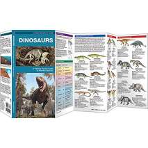 Dinosaurs & Reptiles :Dinosaurs: A Folding Pocket Guide to Familiar Species