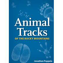 Hunting & Tracking :Animal Tracks of the Rocky Mountains Playing Cards