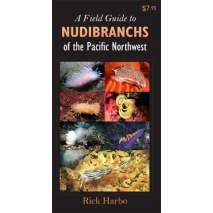 Beachcombing & Seashore Field Guides, A Field Guide to Nudibranchs of the Pacific Northwest (Folding Pocket Guide)
