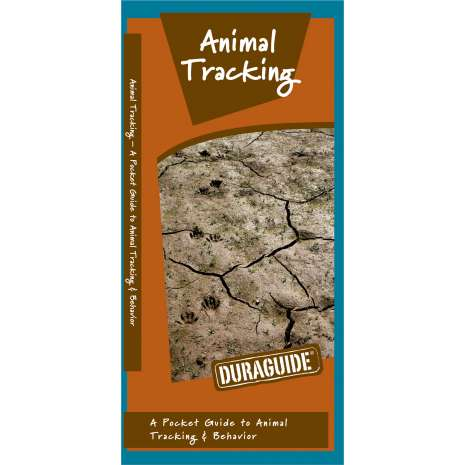 Hunting & Tracking :Animal Tracking