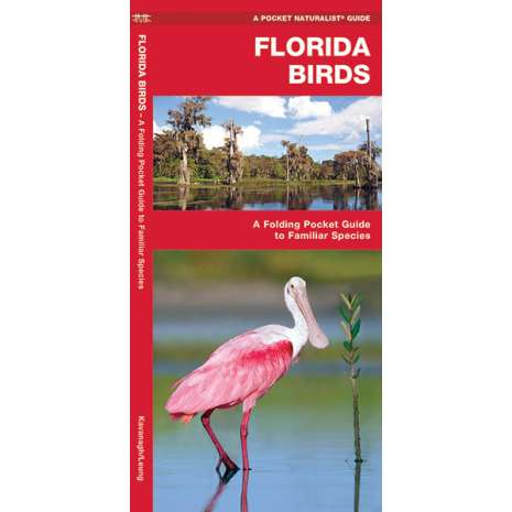 Bird Identification Guides, Florida Birds