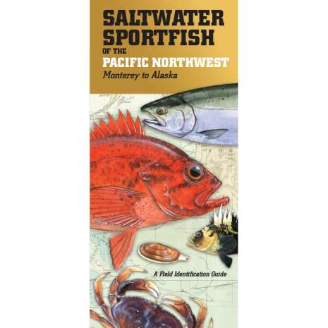 Fish & Sealife Identification Guides :Saltwater Sport Fish of the Pacific NW: Monterey to Alaska FIELD GUIDE