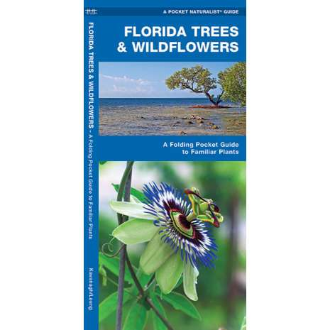 Tree, Plant & Flower Identification Guides :Florida Trees & Wildflowers