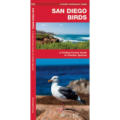 Bird Identification Guides :San Diego Birds
