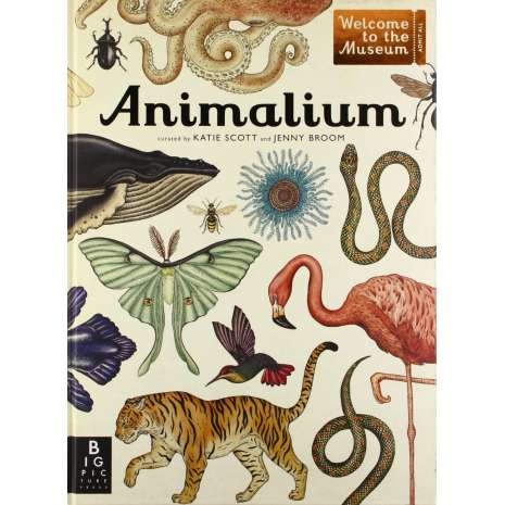 Books for Zoo Gift Shops :Animalium (Welcome to the Museum Series)