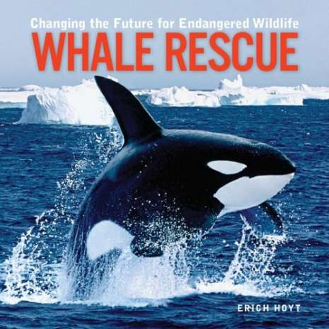 Books for Aquarium Gift Shops :Whale Rescue: Changing the Future for Endangered Wildlife