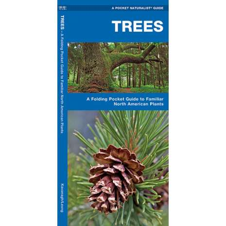 Tree, Plant & Flower Identification Guides :Trees