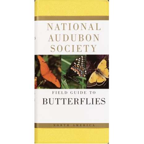 Insect Identification Guides :National Audubon Society Field Guide to North American Butterflies