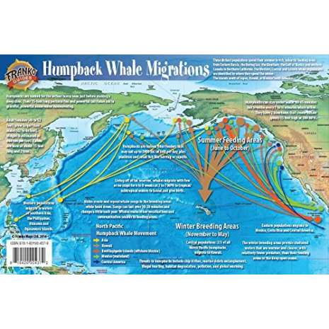 Marine Mammals :Pacific Humpback Whale Migrations