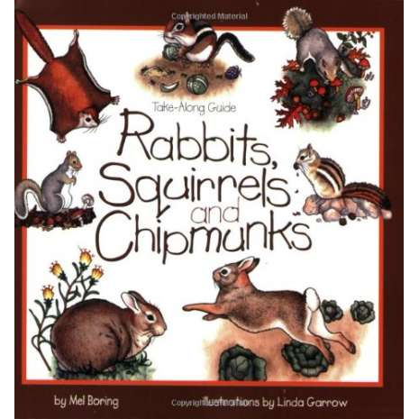 Children's Outdoors :Take-Along Guide: Rabbits, Squirrels and Chipmunks
