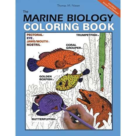 Ocean & Seashore :The Marine Biology Coloring Book, 2nd Edition