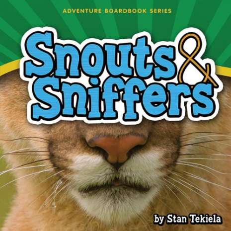 Board Books :Snouts & Sniffers