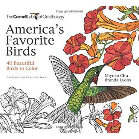 Coloring Books :America's Favorite Birds: 40 Beautiful Birds to Color