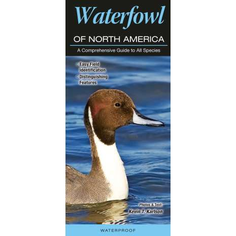 Bird Identification Guides, Waterfowl of North America