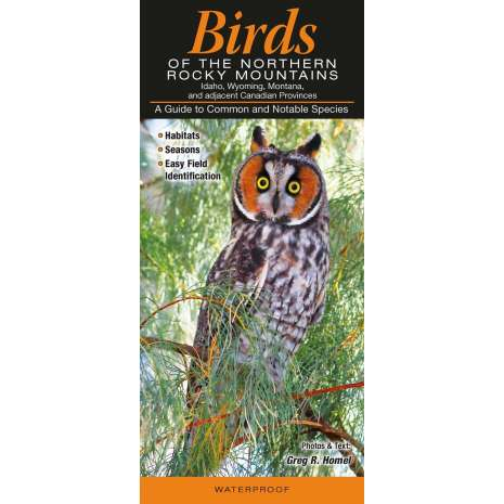 Bird Identification Guides, Birds of the Northern Rocky Mountains