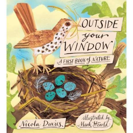 Children's Classics :Outside Your Window: A First Book of Nature