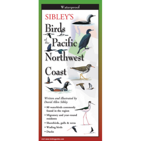 Bird Identification Guides, Sibley's Birds of Pacific NW Coast