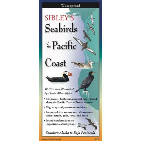 Bird Identification Guides :Sibley's Seabirds of the Pacific Coast