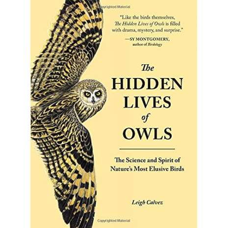 Wildlife & Zoology :The Hidden Lives of Owls: The Science and Spirit of Nature's Most Elusive Birds