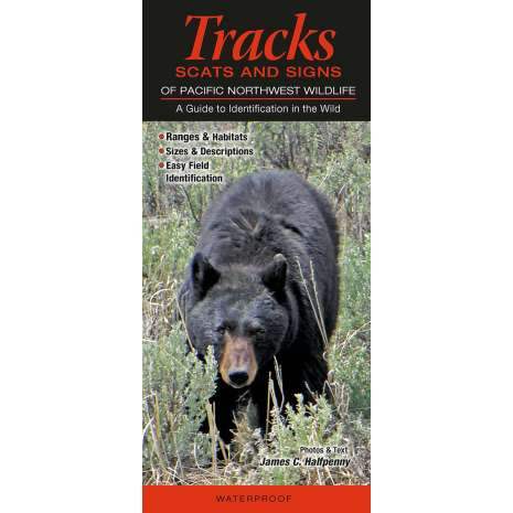 Pacific Northwest Field Guides :Mammals of the Pacific Northwest: Tracks, Scats & Signs