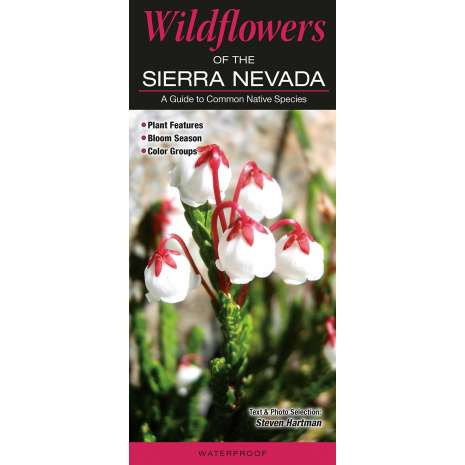 Tree, Plant & Flower Identification Guides, Wildflowers of the Sierra Nevada