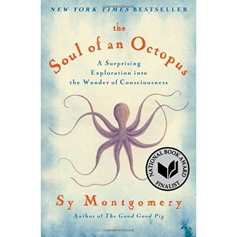 Wildlife & Zoology :The Soul of an Octopus: A Surprising Exploration into the Wonder of Consciousness
