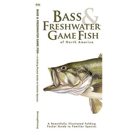 Fish & Sealife Identification Guides :Bass & Freshwater Game Fish of North America