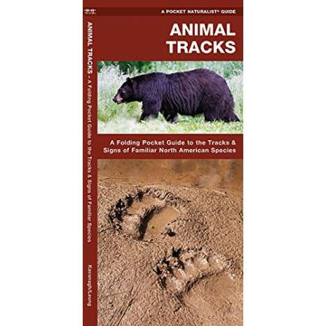 Reptile & Mammal Identification Guides :Animal Tracks: A Folding Pocket Guide to the Tracks & Signs of Familiar North American Species