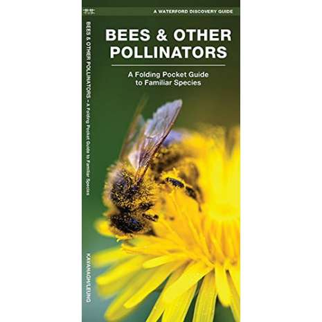 Insect Identification Guides :Bees & Other Pollinators: A Folding Pocket Guide to the Status of Familiar Species