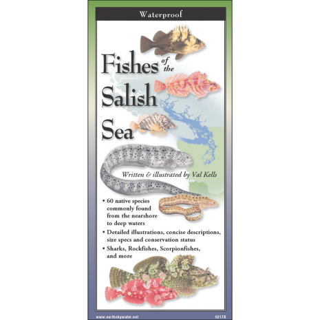 Pacific Northwest Field Guides, Fishes of the Salish Sea