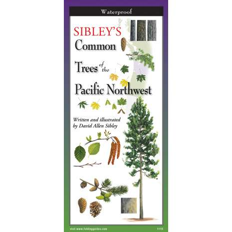 Pacific Northwest Field Guides :Sibley's Common Trees of The Pacific Northwest