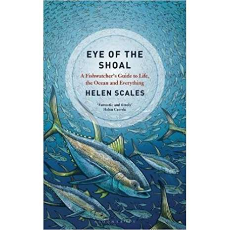 Wildlife & Zoology, Eye of the Shoal: A Fishwatcher's Guide to Life, the Ocean and Everything