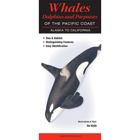 Fish & Sealife Identification Guides, Whales, Dolphins and Porpoises of the Pacific Coast: Alaska to California