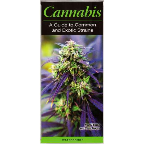 Cannabis & Counterculture Books :Cannabis: A Guide to Common and Exotic Strains