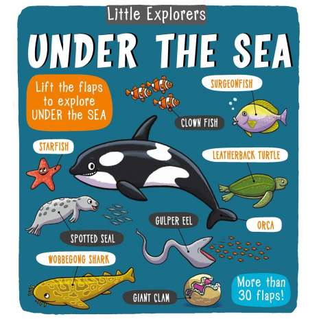 Fish, Sealife, Aquatic Creatures, Little Explorers: Under the Sea