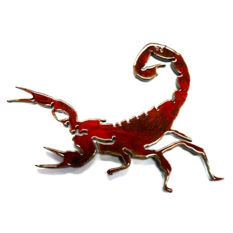 ON SALE Gift Shop related :Scorpion MAGNET