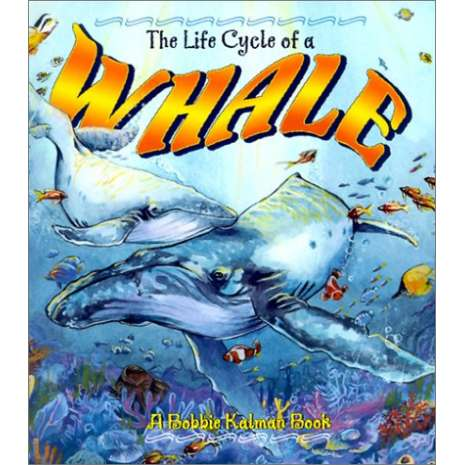 Marine Mammals :The Life Cycle of a Whale