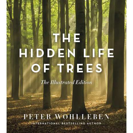 Nature & Ecology :The Hidden Life of Trees: The Illustrated Edition