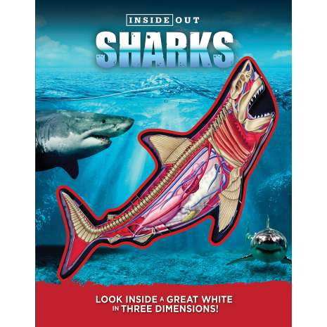 Sharks :Inside Out Sharks: Look inside a great white in three dimensions!