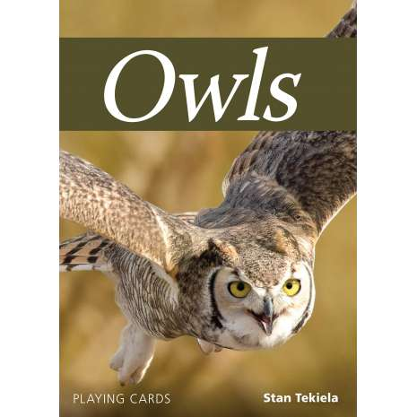 Playing Cards :Owls Playing Cards