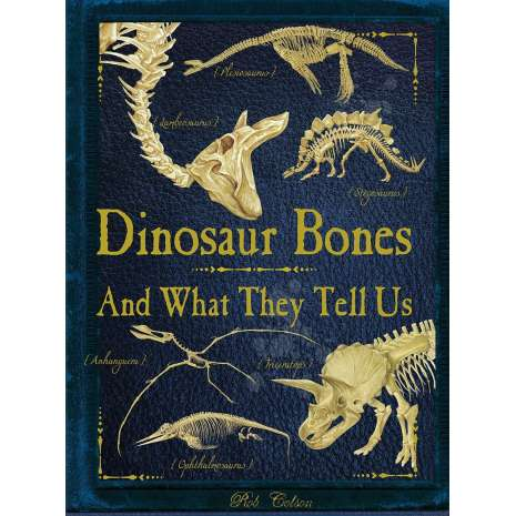 Dinosaurs, Fossils, Rocks & Geology, Dinosaur Bones: And What They Tell Us