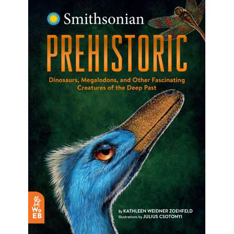 Dinosaurs, Fossils, Rocks & Geology, Prehistoric: Dinosaurs, Megalodons, and Other Fascinating Creatures of the Deep Past