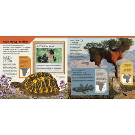 Animals, Animal Atlas