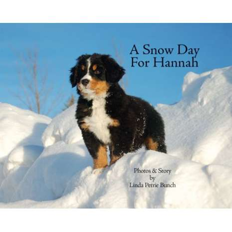 Farm & Domestic Animals :A Snow Day for Hannah