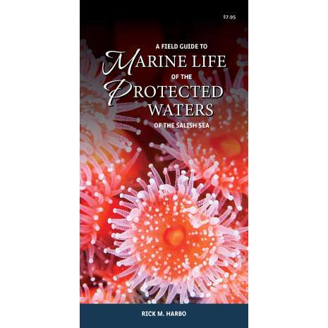 Pacific Northwest Field Guides :A Field Guide to Marine Life of the Protected Waters of the Salish Sea