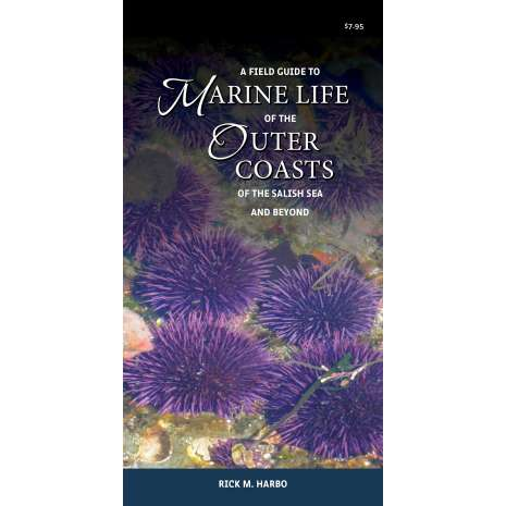 Pacific Northwest Field Guides :A Field Guide to Marine Life of the Outer Coasts of the Salish Sea and Beyond