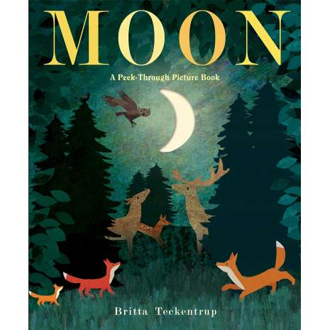 Environment & Nature, Moon: A Peek-Through Picture Book