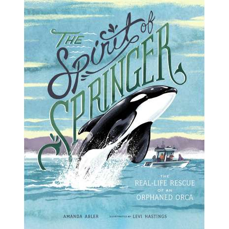 Marine Mammals :The Spirit of Springer: The Real-Life Rescue of an Orphaned Orca