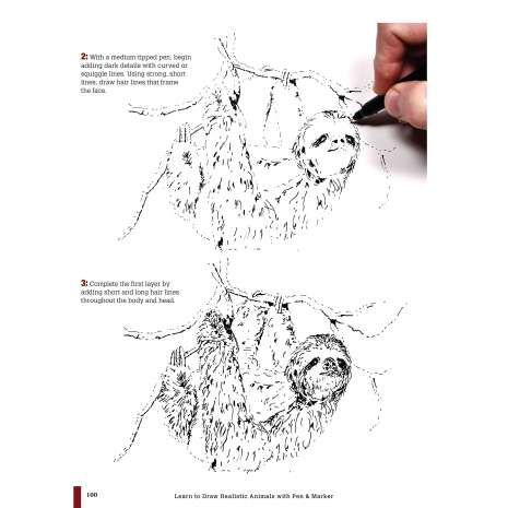 Animals :Learn to Draw Realistic Animals with Pen & Marker: From an Armadillo to a Zebra 26 Animals to Discover & Draw!
